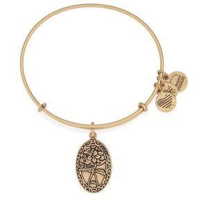 NWT Alex and Ani friendship bracelet